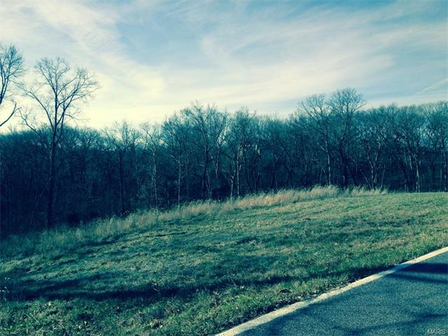 17394 Orrville Road, Wildwood, MO 63005