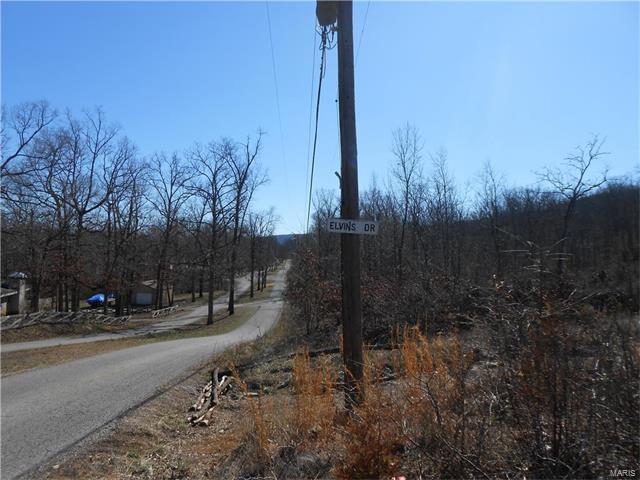 523 Elvins Drive, Bismarck, MO 63624