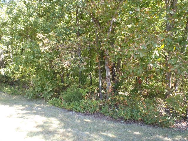 201 Deer View Drive, Troy, MO 63379