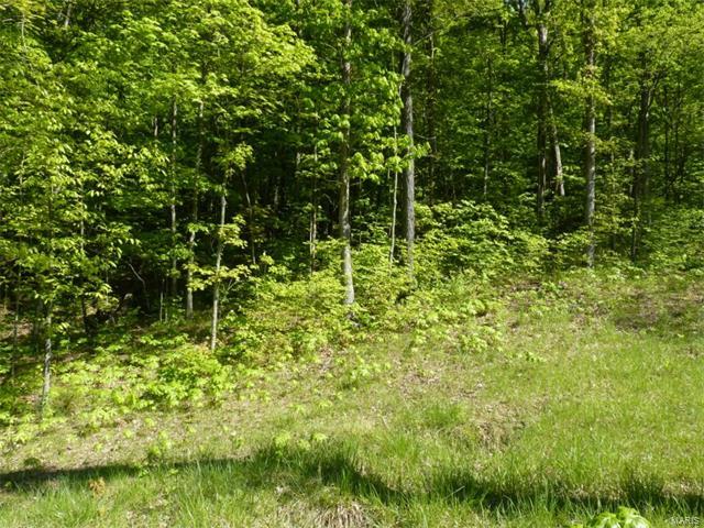 14 Old Logging Road 14 Lot, Eureka, MO 63025