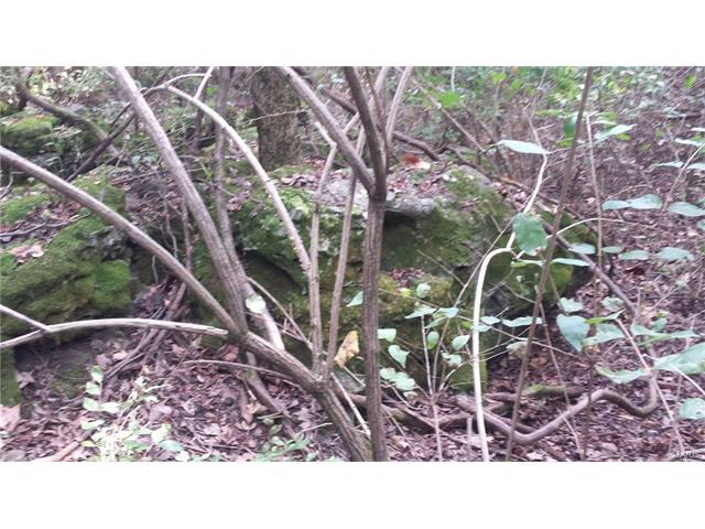 0 Wild Rose, Barnhart, MO 63012