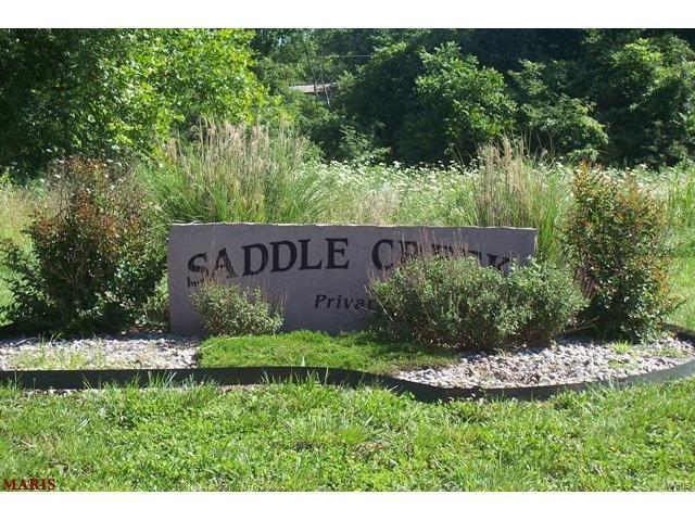 13462 Saddle Creek, De Soto, MO 63020