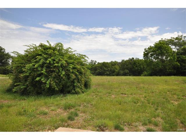 238 Fiddlecreek Ridge, Wentzville, MO 63385