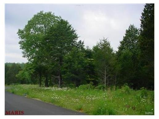 0 Winding Woods Court Lot 3, St Clair, MO 63077