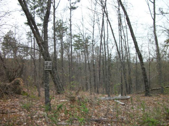 16 Eagle Lane , Fredericktown, MO 63645