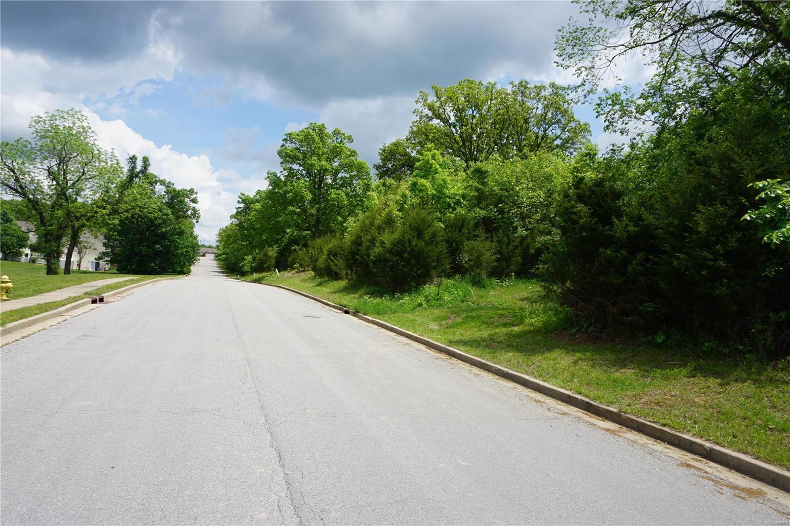 0 Columbia Avenue Lot 13, Rolla, MO 65401