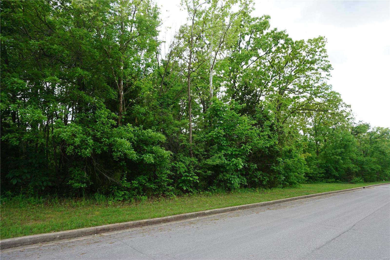 0 Columbia Avenue Lot 20, Rolla, MO 65401