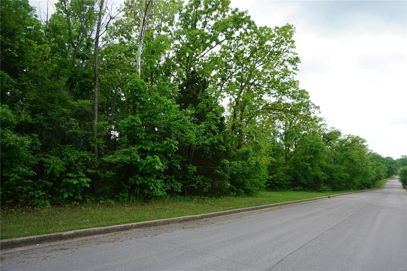 0 Columbia Avenue Lot 22, Rolla, MO 65401