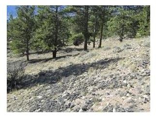 12 Ross, Twin Lakes, CO 81251